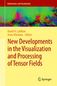 New Developments in the Visualization and Processing of Tensor Fields - David H. Laidlaw; Anna Vilanova