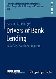 Drivers of Bank Lending: New Evidence from the Crisis