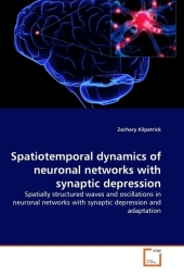 Spatiotemporal dynamics of neuronal networks with synaptic depression - Zachary Kilpatrick