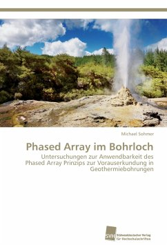 Phased Array im Bohrloch - Sohmer, Michael