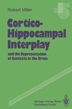Cortico-Hippocampal Interplay and the Representation of Contexts in the Brain - Miller, Robert
