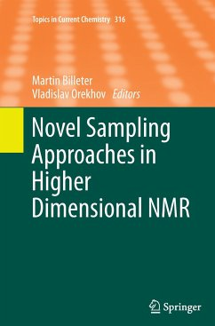 Novel Sampling Approaches in Higher Dimensional NMR - Herausgegeben von Billeter, Martin Orekhov, Vladislav