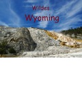Wildes Wyoming (Posterbuch DIN A3 quer) - Claudio Del Luongo