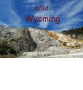 Wild Wyoming / UK-Version (Poster Book DIN A4 Landscape) - Del Luongo Claudio