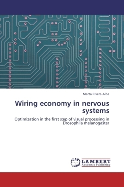 Wiring economy in nervous systems