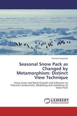 Seasonal Snow Pack as Changed by Metamorphism: Distinct View Technique