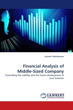 Financial Analysis of Middle-Sized Company: Controlling the viability and the future development of your business