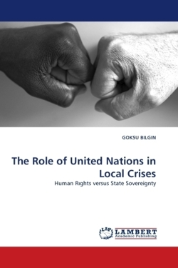 The Role of United Nations in Local Crises