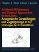 Anatomical Exposures and Surgical Approaches to the Limbs Anatomische Darstellungen und Zugangswege in der Chirurgie der Extremitäten - Francesco Ruggieri; Gian F. Zinghi; Stefano Boriani; Luigi Specchia
