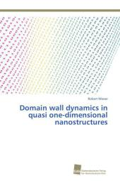 Domain wall dynamics in quasi one-dimensional nanostructures - Robert Wieser