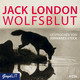 Wolfsblut, 4 Audio-CDs - Jack London