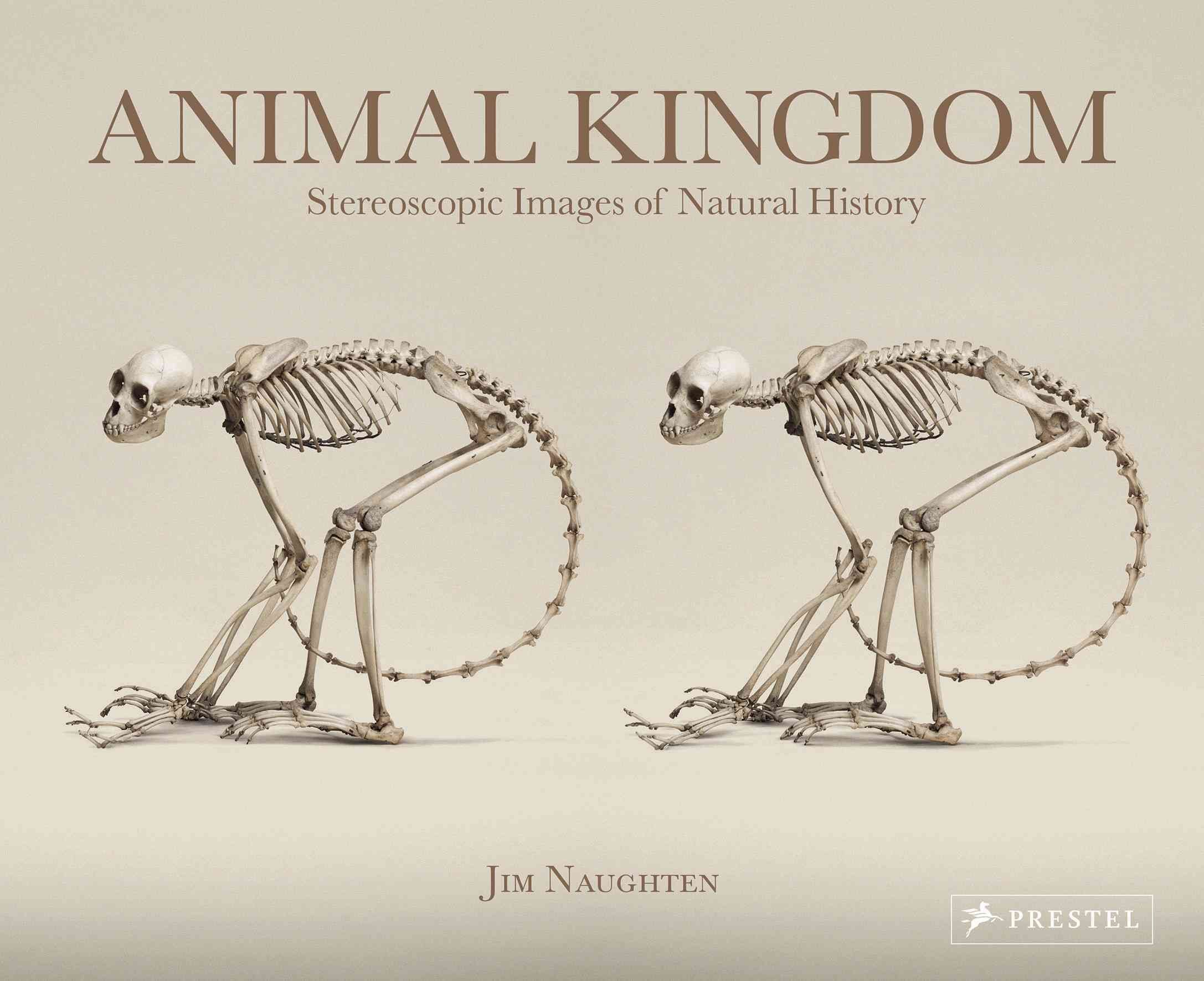 Animal Kingdom - Jim Naughten
