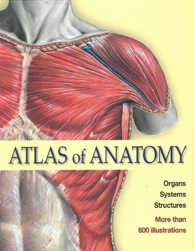 Atlas of Anatomy: Organs, Systems, Structures - Elsevier GmbH